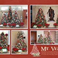 Mount Vernon Christmas Trees