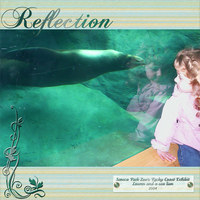 Reflection 2004