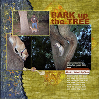 Bark up a Tree