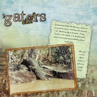 'Glades 'Gators Right