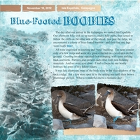 Blue-Footed Boobies, left