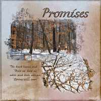Promises - Quote Chall March 6