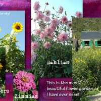 Monet's Flowers - Page 2