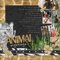 Animal Sightings