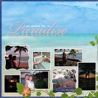 Paradise (Newsletter Tutorial Chat)