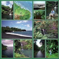 Road to Hana - Left