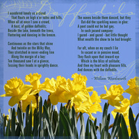 My favorite poem about my favorite flower
