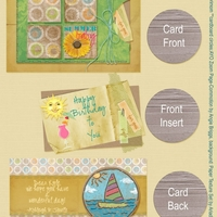 Summer Baby Bday Card