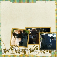 tuesday freebie-Ngaire's cows