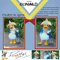 Disney Album Donald Duck