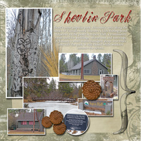 Week 6 - Shevlin Park