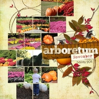 Arboretum in November-Template Challenge