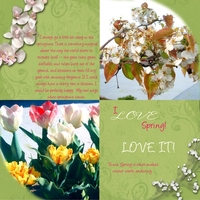 I'm crazy about spring-page 1