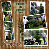 Planting the Christmas tree