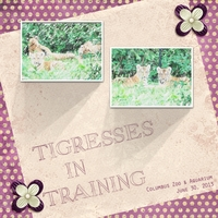 Tigresses In Training