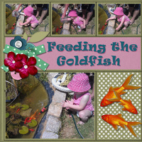 Feeding the Goldfish