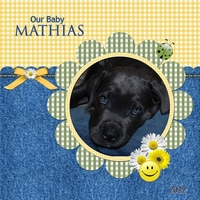 Our puppy Mathias