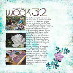 Project Life 2017 - Week 34