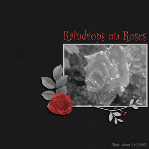 WWChallenge 24thNov - Raindrops on Roses