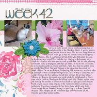 Project Life 2017 Week 42