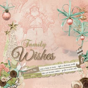 Family Wishes