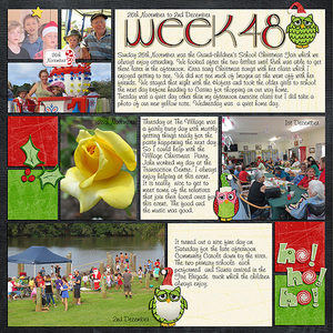 Project Life 2017 Week 48