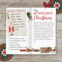 My Twelve Days of Christmas List by Susie Roberts