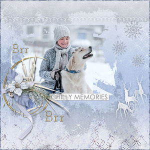 Chilly Memories
