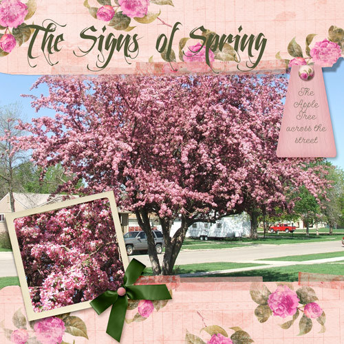 The Signs of Spring