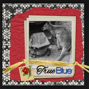 Build-a-Taco - True Blue