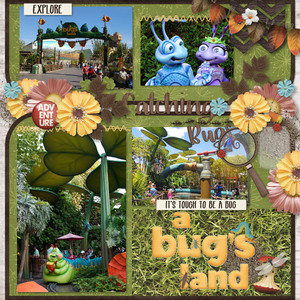 Catching Bugs: A Bugs Land