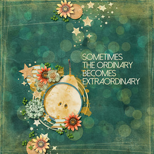 Sometimes the Ordinary become Extraordinay