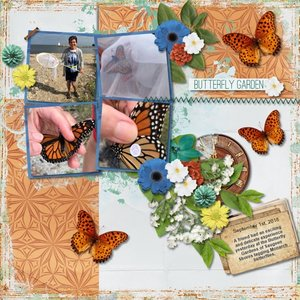 Butterfly Tagging