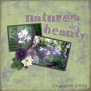 Nature's Beauty - Layout #6