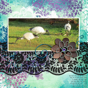 Thursday - Mixed Media Challenge - Ibis Lace