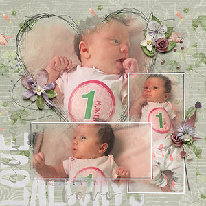 Abbey: 1 Month
