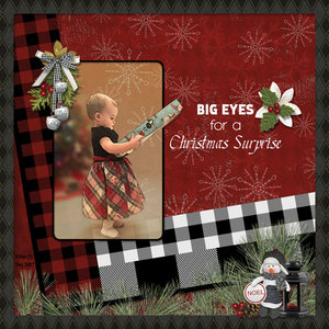 Big Eyes for a Christmas Surprise