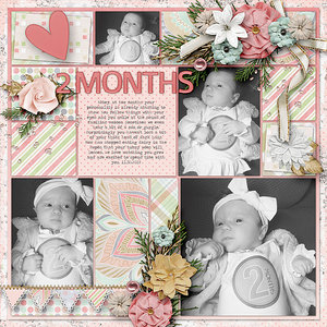 Abbey 2 Months