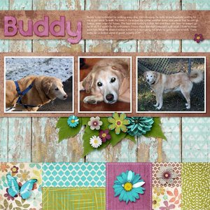 Buddy Walking_600