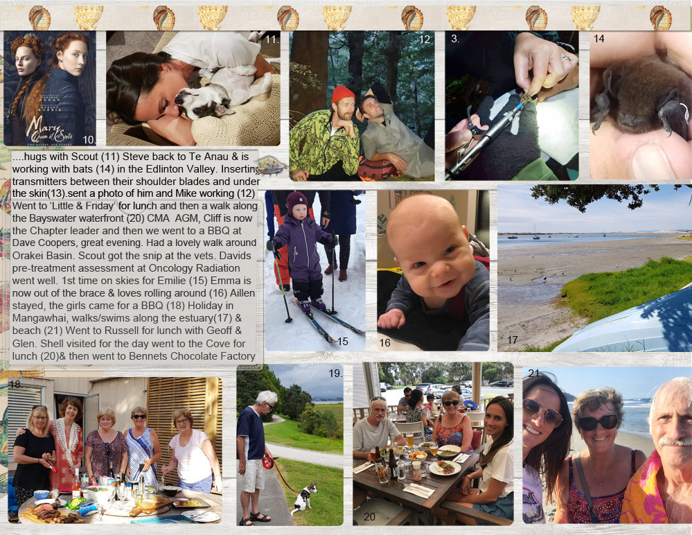 Project Life_January 2019_page 3