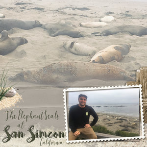 Project Life 2019_California_San Simeon