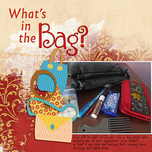 WWFeb9_What is in the Bag