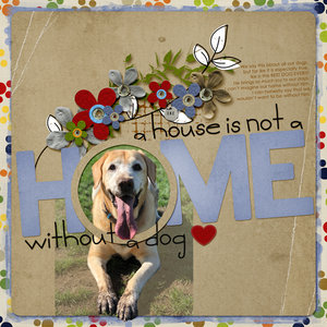 A House is not a Home...without a dog!