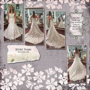 Wedding Gown Shopping 1