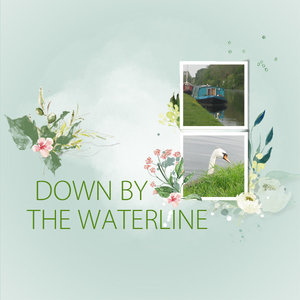 Down by the waterline