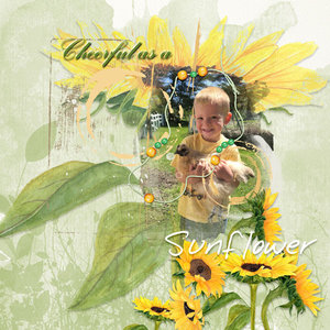 CWX_Sunflower.jpg