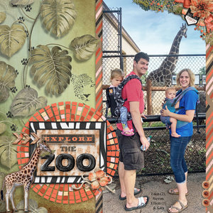 Explore the Zoo