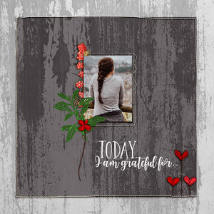 Today I am grateful for ..