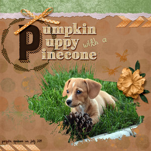Pumpkin Puppy - Weekend Challenge 14 Sep