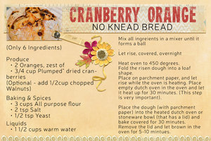 Orange Cranberry No knead bread